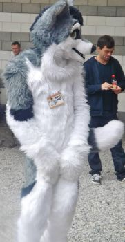 furry cosplayer at  ycc6 by IamNasher