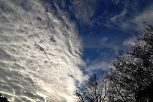 Afternoon Clouds 12-17-10 by Tailgun2009