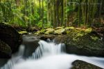 Curtis Falls Cascades by DrewHopper