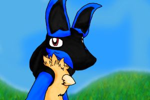 Lucario in the meadow by Affy-Wolf