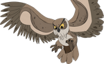 .: Owl :. by PirateHearts