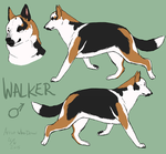 Walker by Artist-Who-Draws