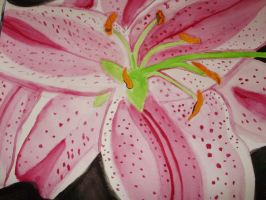 Star Lily painting by NinjaZombie5692