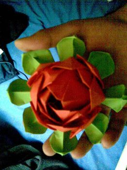Origami lotus flower by JacqueProductions