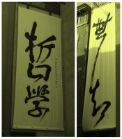 Hideograms on walls by lotus82