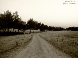 The Road To Nowhere by annafilip