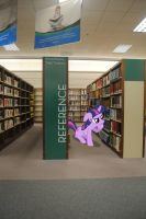 Twilight in the Reference Section by UtterlyLudicrous