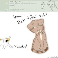 Q10: U mad Iggyeyebrows? by Ask-NekoSpain