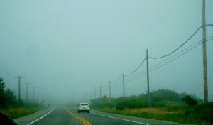 Driving Into the Fog by artsydanii