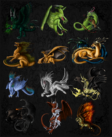 dragons by Zenida