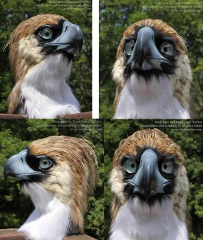 Philippine Eagle Mask by Nambroth