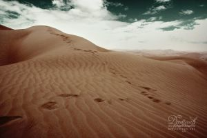 Liwa II by DeeMaaH