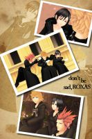 Don't Be Sad, Roxas by Laikkuseia