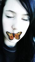 The Butterfly Effect by Avelith