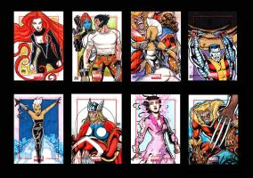 Marvel Universe Compiled2 by JASONS21