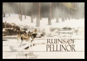 Ruins of Pellinor by Hurlz