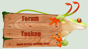 Forum-Toshop New ID by Forum-Toshop
