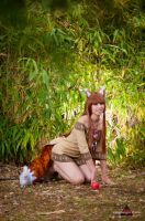 Horo from Spice and Wolf by ely707