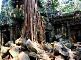 Ta Prohm by beckawalley