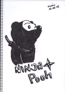 9th Attempt- Ninja the Pooh by FreakinCat