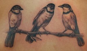 birds of a branch by Phedre1985