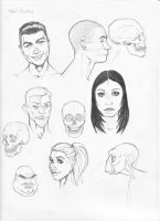 Anatomy Study Part 1-Heads by Rogzilla