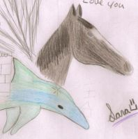 My horse Sara and a Dolphin by herestofakefriends