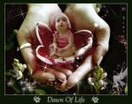 Dawn Of Life by scarcy
