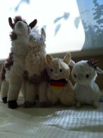 I LOVE ALPACAS by oatmealtsui