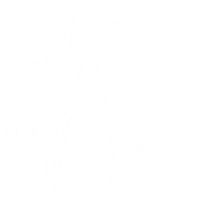 Call of Duty Ghosts Symbol by IvanCEs