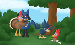 The Fleeing Farfetch'd Mission by ShadOBabe