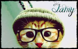 Cat with glasses by clara1194