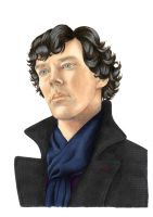 Sherlock Nobody's reading your website by Melnia