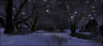 Winters Night by RavensSpell