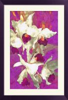 Watercolor Orchids by Tailgun2009