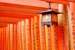 Shinto by Julisss