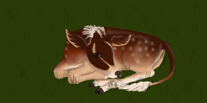 Fawnling Fawn by horselady36501