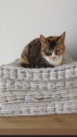 Princess On The Pea by roxan1930