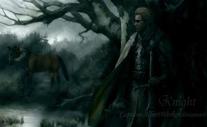 Your Knight in Shining Armour by Captain-AlbertWesker