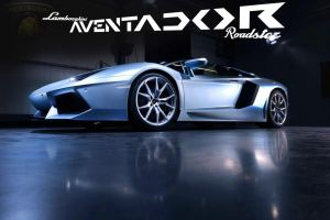 Aventador Roadster by Royalraptor