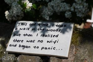 Why Doesn't Nature Have Wi-Fi? by Rhiallom