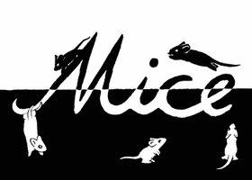 Black and White Mice by veli