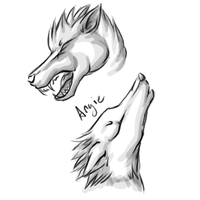 Wolf Head Sketches (UPDATE) by Roguelucifer