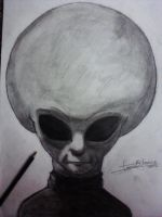 Zeta Reticuli Grey Alien by Firmino17