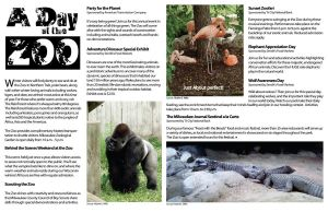 Magazine Page Layout by RyleeAmazing