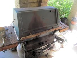 Dad's 2-burner gas grill by BigMac1212