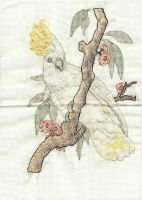 Cockatoo Crossstitch by BlueFeatherArchangel
