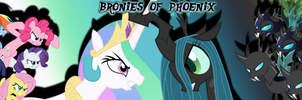 Bronies of Phoenix Facebook Group Banner 2 (Edit) by tehAgg