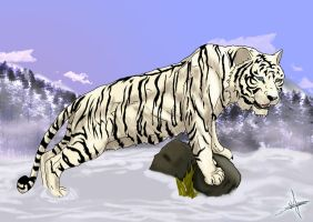white tiger by viktorangel1