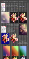 Paint tool SAI tutorial: Color overlay by secret-pony